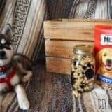 DIY Dog Treat Jar (A Container Store Knockoff)