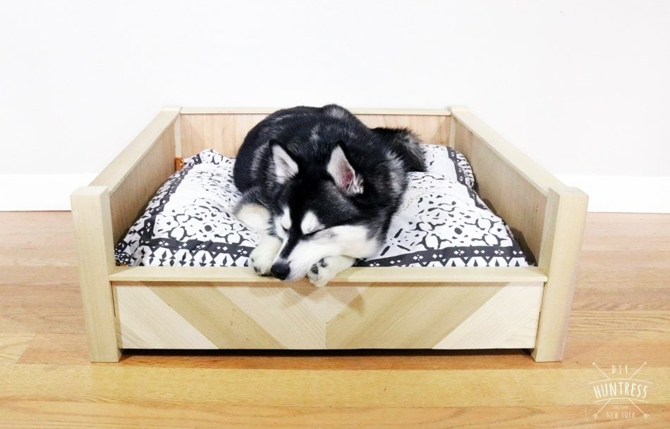 dog bed for husky
