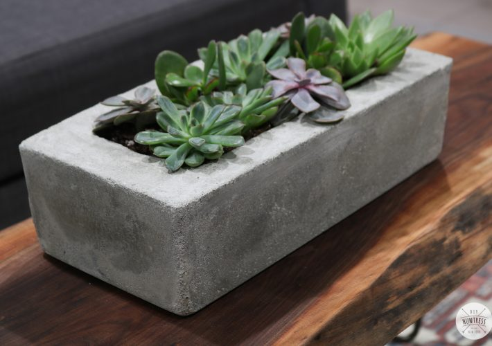 concrete planter with tupperware