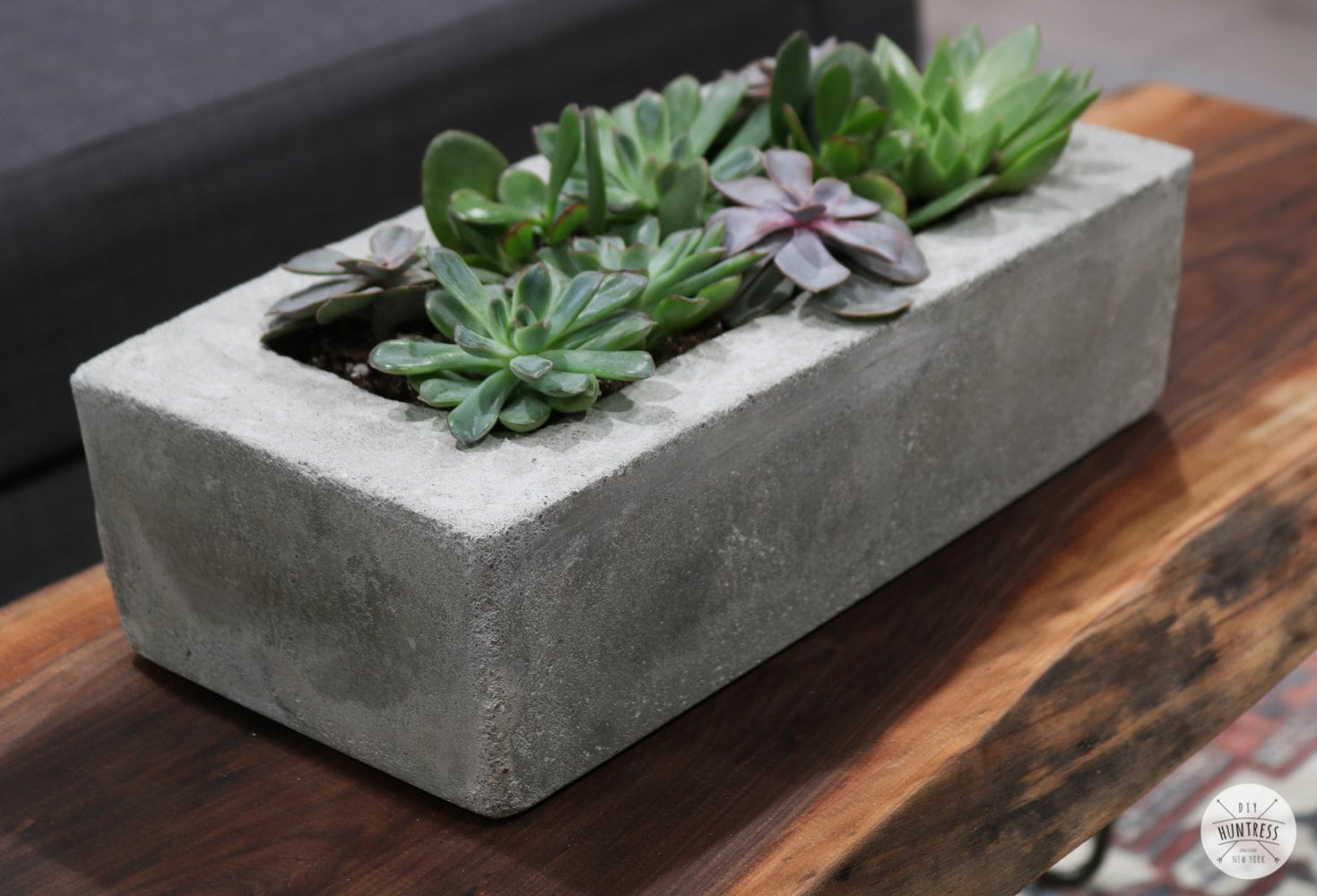 DIY Easy Concrete Planter