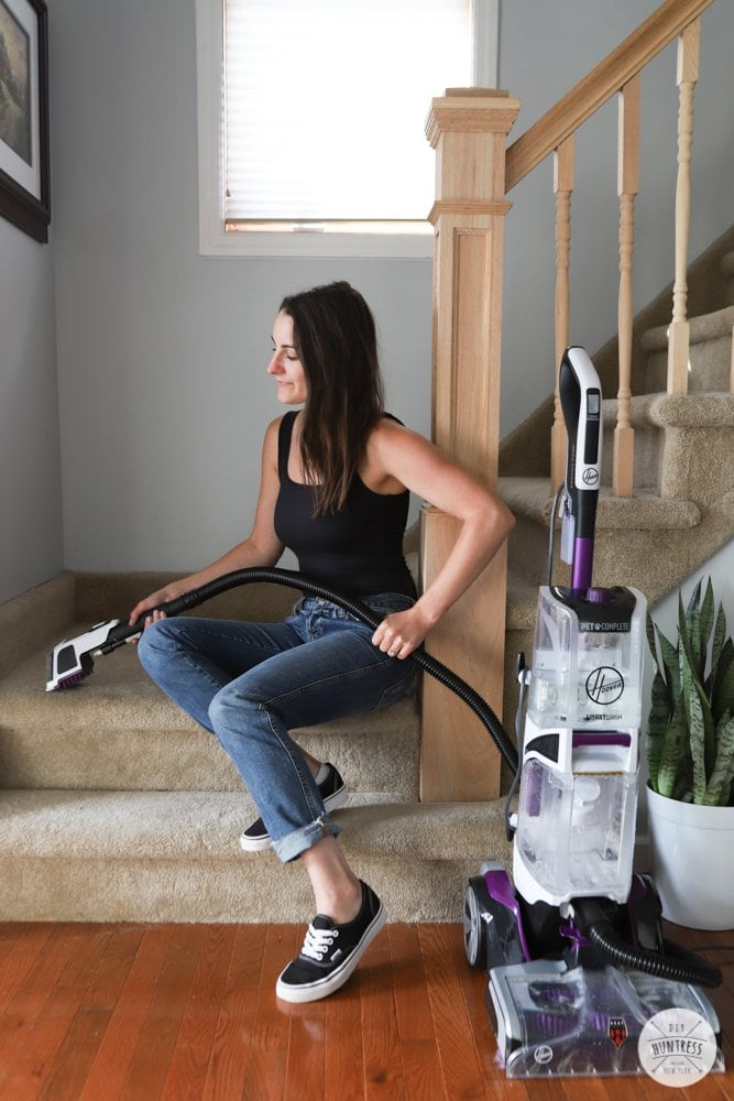 cleaning stairs pet cleaner